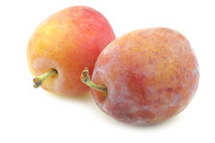 Fresh ripe red and yellow plums Stock Photography