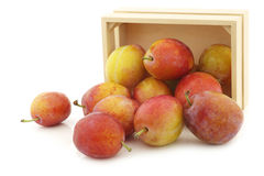 Fresh ripe red and yellow plums in a wooden box Royalty Free Stock Image
