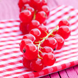 Fresh ripe redcurrant Royalty Free Stock Images