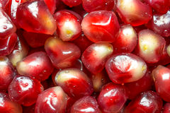 Fresh ripe seeds of pomegranate Stock Photography