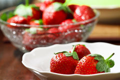 Fresh ripe strawberries Stock Photography