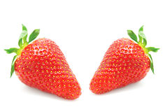 Fresh ripe strawberries Royalty Free Stock Photography