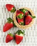 Fresh Ripe Strawberries Stock Photography