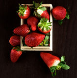 Fresh Ripe Strawberries Royalty Free Stock Photos