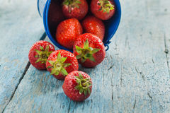 Fresh ripe strawberries in a blue bucket on a wooden background.  Stock Image