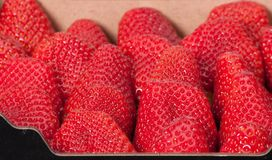 Fresh Ripe Strawberries In A Box.  Stock Photo