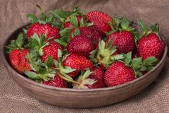 Fresh ripe strawberries Stock Photos