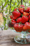Fresh ripe strawberries in glass bowl Royalty Free Stock Images