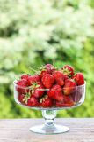 Fresh ripe strawberries in glass bowl Stock Photos