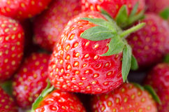 Fresh ripe strawberries, macro Royalty Free Stock Photography