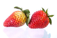 Fresh ripe strawberries. On White stock images