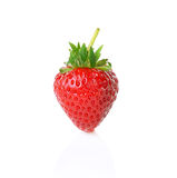 Fresh ripe strawberries on white background. Fresh ripe strawberries isolated on white background Royalty Free Stock Photography