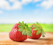 Fresh ripe strawberries on  wooden board Stock Images