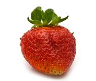 Fresh ripe strawberry Royalty Free Stock Photo