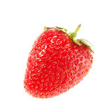 Fresh ripe strawberry Stock Photography