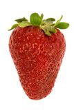 Fresh and ripe strawberry Stock Photos