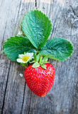 Fresh ripe strawberry with flower and leaves on dark wooden background Royalty Free Stock Photo