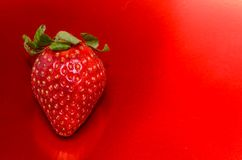 Fresh Ripe Strawberry Royalty Free Stock Photos