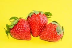 Fresh Ripe Strawberry Stock Photos