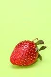 Fresh Ripe Strawberry Royalty Free Stock Photo