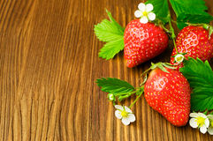 Fresh ripe strawberry with leaves and blossom Royalty Free Stock Images
