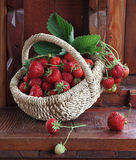 Fresh ripe strawberry in a wattled basket. Still-life with a strawberry in a wattled basket royalty free stock photos