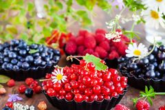 Fresh ripe summer berriesб summer background royalty free stock image