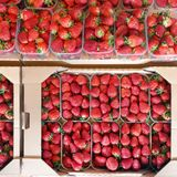 Fresh ripe sweet strawberries in carton paper boxes at market. Organic berries wrapped in cardboard container. View from royalty free stock photo