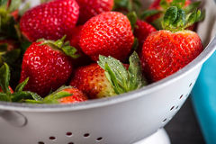 Fresh ripe sweet strawberries, just clean still wet Stock Photography