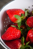 Fresh ripe sweet strawberries, just clean still wet Royalty Free Stock Photo