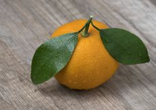 Fresh ripe tangerine with leaves on a wooden background stock photography