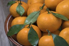 Fresh ripe tangerines with leaves in bowl on a wooden background royalty free stock photos