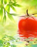Fresh ripe tomato Stock Photos