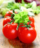 Fresh Ripe Tomatoes. Bunch of fresh red ripe tomatoes with water droplets on rustic wooden boards Royalty Free Stock Photos