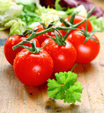 Fresh Ripe Tomatoes. Bunch of fresh red ripe tomatoes with water droplets on rustic wooden boards Stock Photography