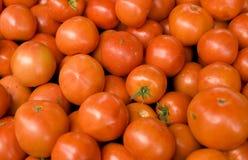 Fresh ripe tomatoes background Royalty Free Stock Photo