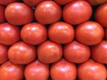 Fresh ripe tomatoes Royalty Free Stock Photos
