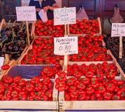 Fresh ripe tomatoes from Corleone, Italy. Royalty Free Stock Photos