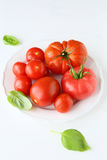 Fresh and ripe tomatoes Stock Photography
