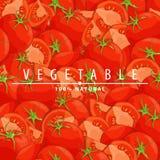 Fresh ripe tomatoes illustration. Group of fresh red tomatoes vector illustration Royalty Free Stock Images