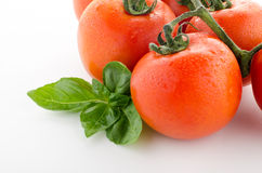 Fresh ripe tomatoes, isolated on white background Stock Images