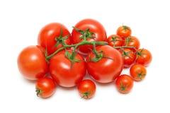 Fresh ripe tomatoes isolated on white background Stock Photos