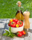 Fresh ripe tomatoes, olive oil bottle, pepper shaker and herbs Stock Image
