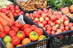 Fresh ripe tomatoes for sale Royalty Free Stock Image