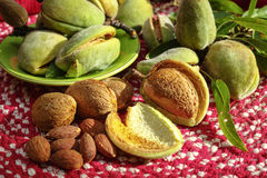 Fresh ripe unpeeled almonds with nutshell and leaves Stock Photo