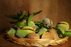 Fresh ripe unpeeled almonds with nutshell and leaves. In Provence, France Stock Image