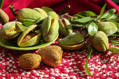 Fresh ripe unpeeled almonds with nutshell and leaves Stock Image