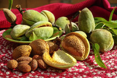 Fresh ripe unpeeled almonds with nutshell and leaves Royalty Free Stock Image