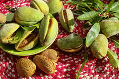 Fresh ripe unpeeled almonds with nutshell and leaves Stock Images