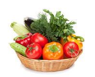 Fresh ripe vegetables in basket Stock Photos